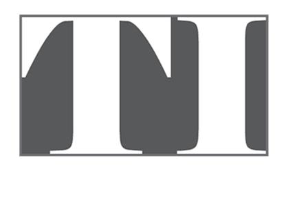 Logo Design Services for Torino Inc